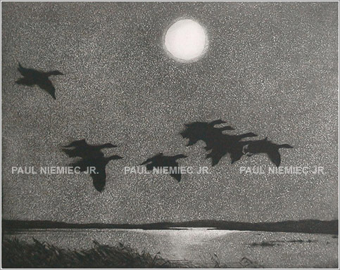 Night Flight, etchings and dry points by Paul Niemiec